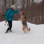 In montagna con il cane, la vera storia di Croda
