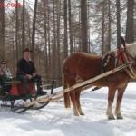Andare a cavallo sulla neve