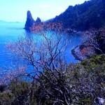 Il Selvaggio Blu di Roberto Parolari