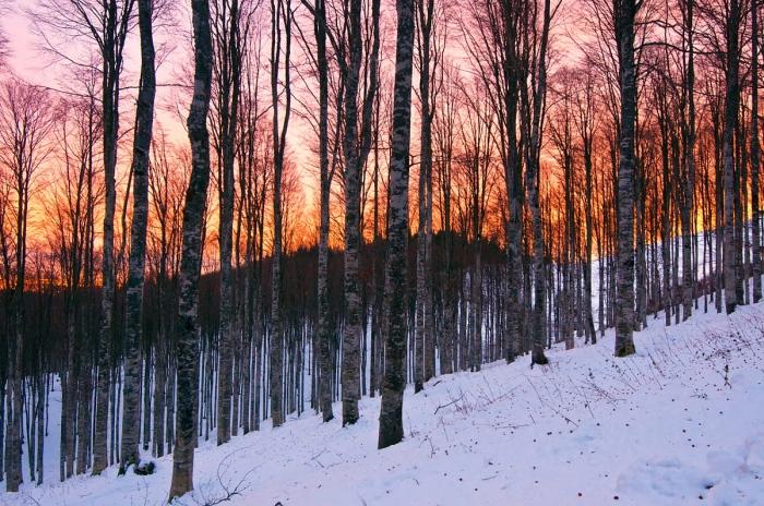 escursioni al freddo