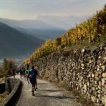 Valtellina Wine Trail: la Valtellina tutta d'un fiato