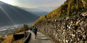 valtellina wine trail